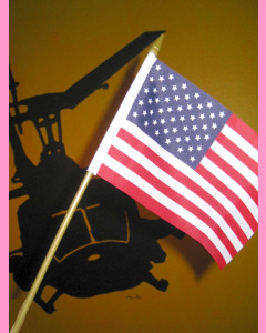 U.S. Stick Flag